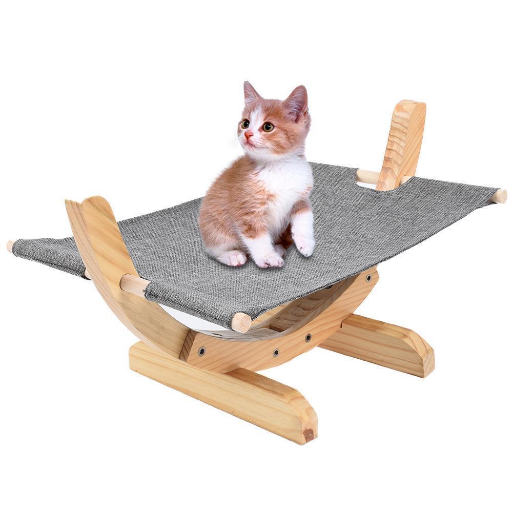 chaton sur hamac en bois