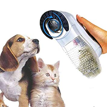 aspirateur chat